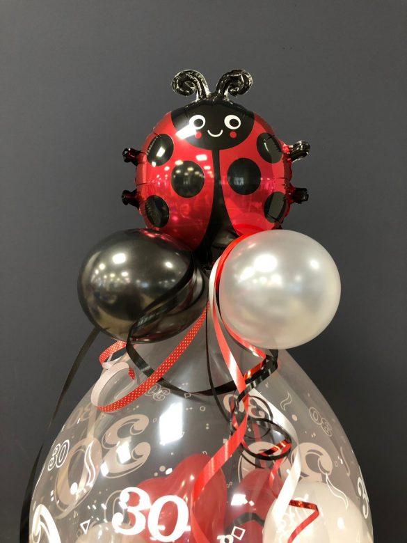 Ballongeschenk mit Glückkäfer € 14,90 3