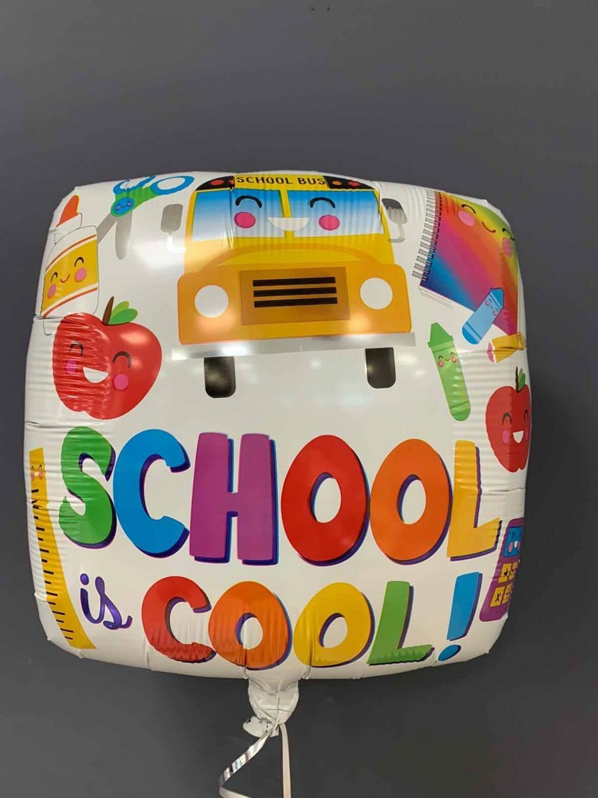 School is Cool € 5,90 1